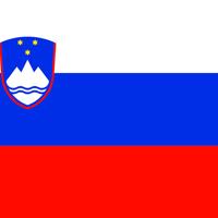slovence-tercume-2